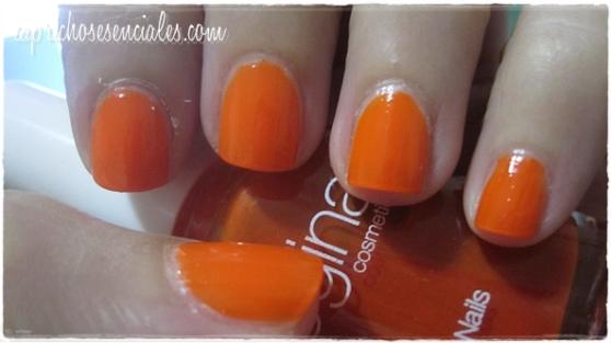 Regina Orange 2