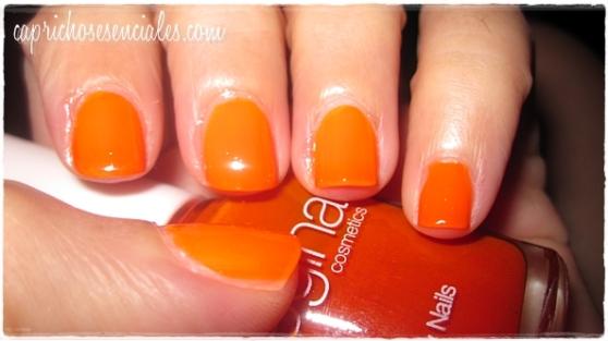 Regina Orange 3