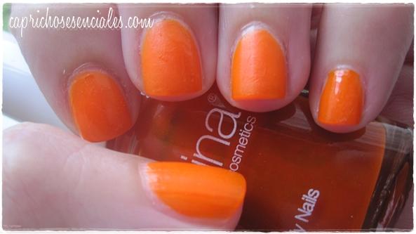 Regina Orange 6